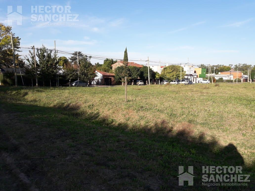 Foto Terreno en Venta en  Villa Elisa,  La Plata  Calle 400 nº 800