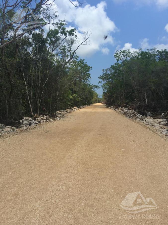 Foto Terreno en Venta en  Tulum ,  Quintana Roo  Terreno en Venta en Tulum/ Region 10