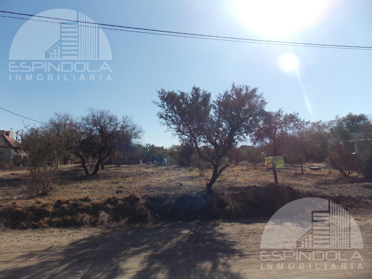 Foto Terreno en Venta en  Quintas del Tomero,  Merlo  Quinta del Tomero