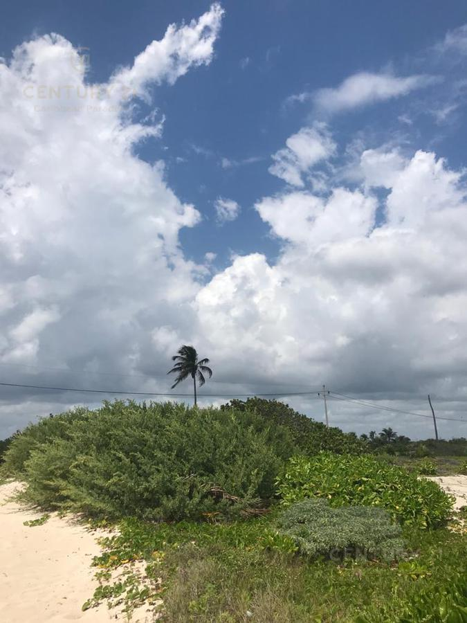 Mahahual Land for Sale scene image 3
