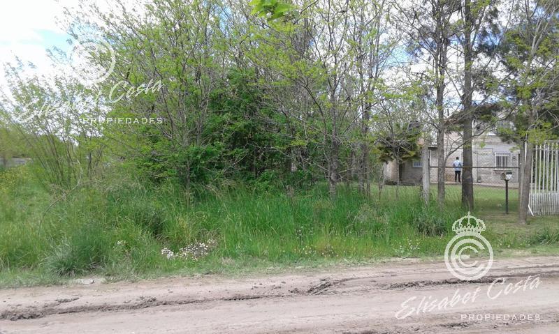 Foto Terreno en Venta en  General Belgrano ,  Interior Buenos Aires  601 entre 626 y 628