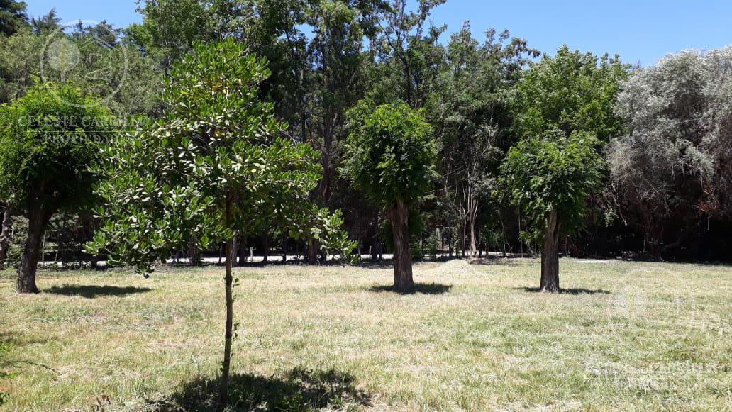Foto Terreno en Venta en  El Remanso,  Countries/B.Cerrado (Exaltación)  La Cortejada