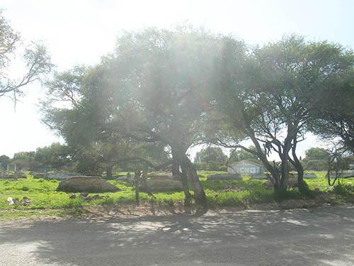 Foto Terreno en Venta en  Ezequiel Montes Centro,  Ezequiel Montes  Excelente terreno sobre calle principal.