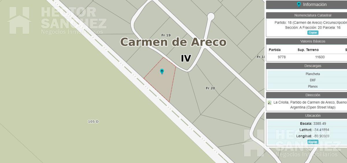 Foto Terreno en Venta en  Carmen De Areco,  Carmen De Areco  Ruta 7 al 500