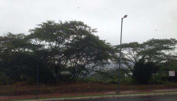 Foto Terreno en Venta en  Puembo,  Quito  Arrayanes