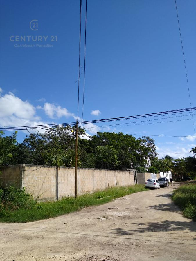 Benito Juárez Land for Sale scene image 5