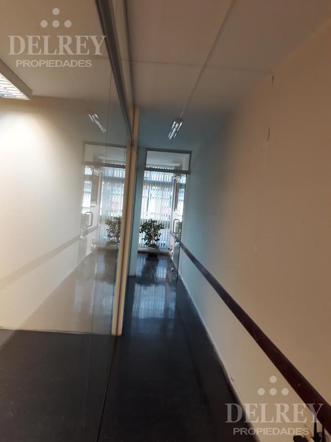 Foto Oficina en Alquiler en  Cordón ,  Montevideo  18 de Julio y Arenal Grande