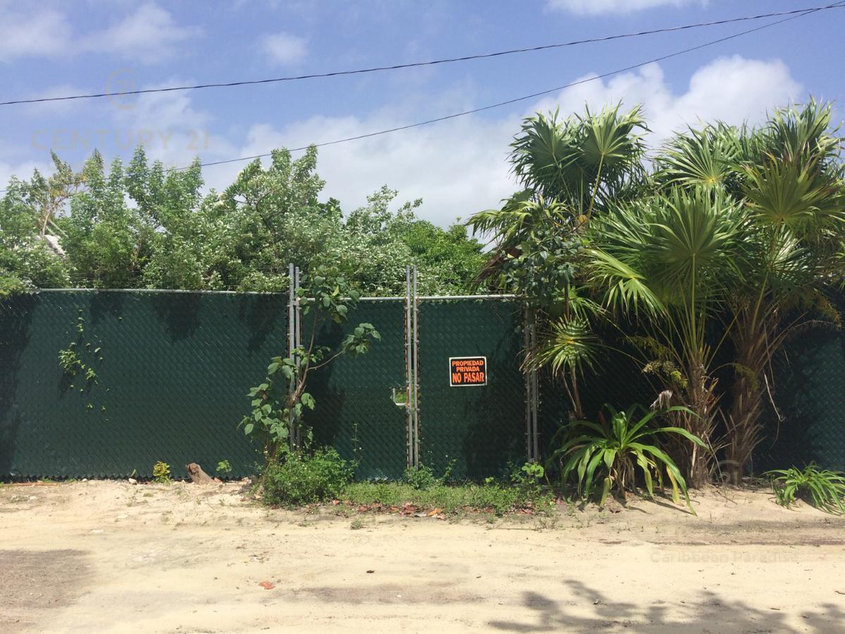 Quintana Roo Land for Sale scene image 5