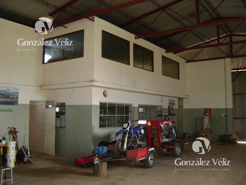 Foto Depósito en Venta en  Carmelo ,  Colonia  Calle Los Teros - Lomas