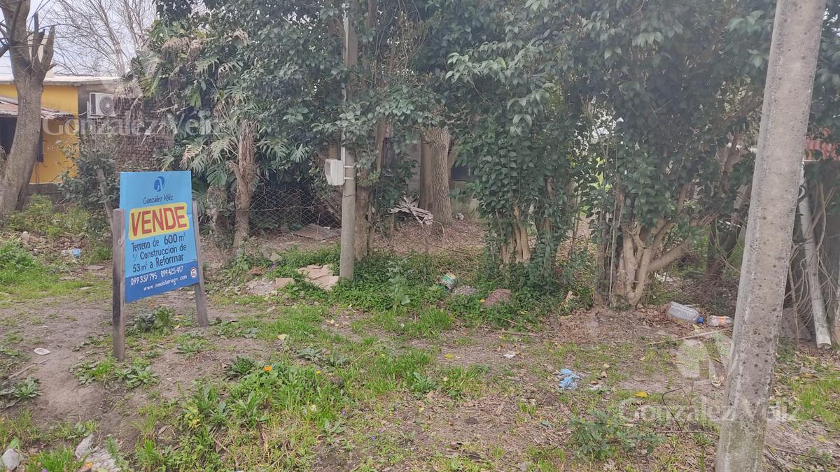 Foto Terreno en Venta en  Zona Norte,  Carmelo  Natalio Vadell entre 19 de Abril y Sarandí
