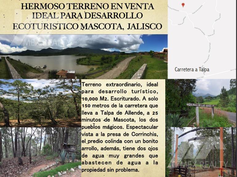 Foto Terreno en Venta en  Ciudad Mascota,  Mascota  HERMOSO TERRENO EN VENTA      IDEAL PARA DESARROLLO    ECOTURISTICO MASCOTA,  JALISCO