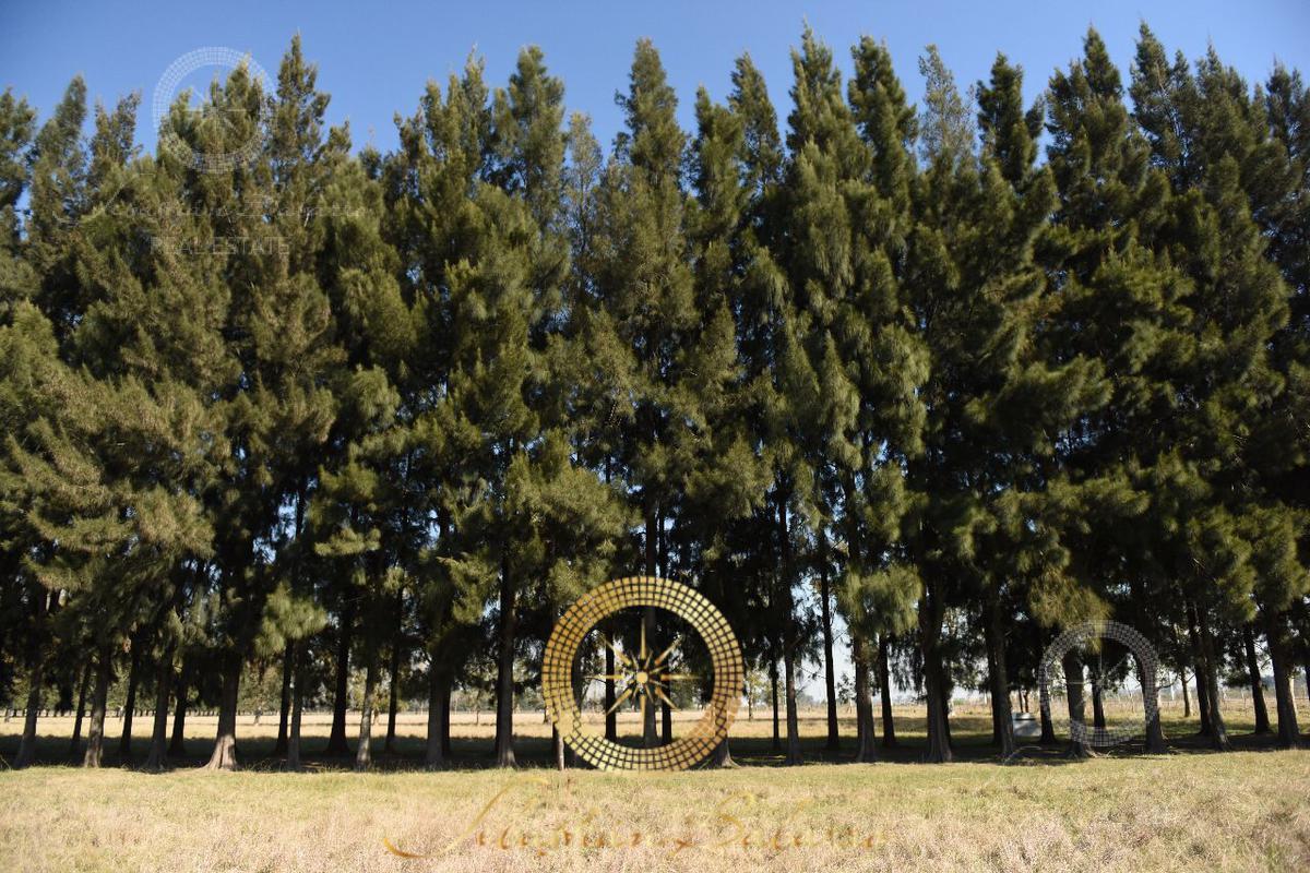 Foto Terreno en Venta en  Lares de Canning,  Countries/B.Cerrado  Lares de Canning