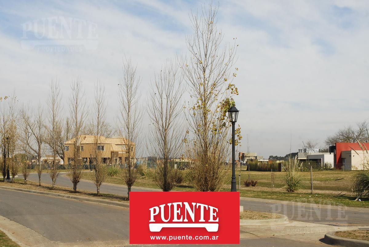 Foto Terreno en Venta en  San Felipe,  Canning (Ezeiza)  San Felipe al Pulmón
