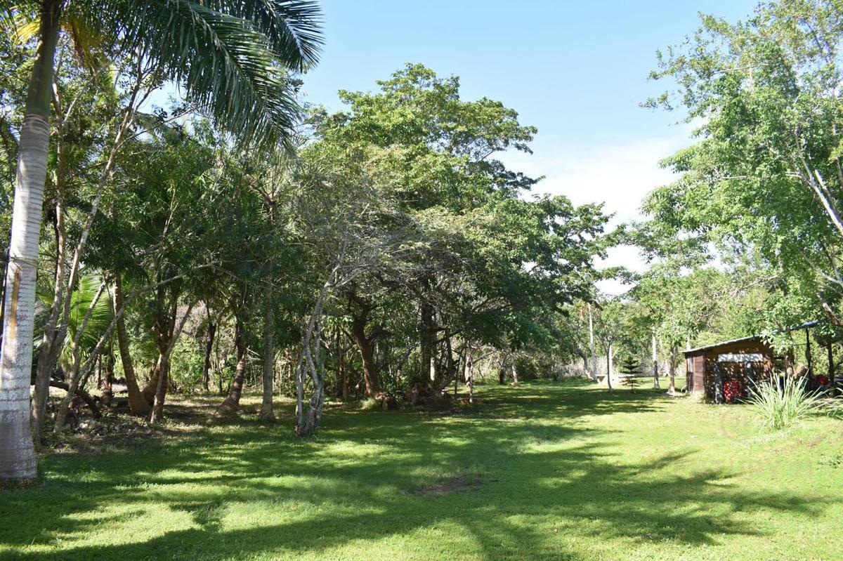 Buenavista Land for Sale scene image 19