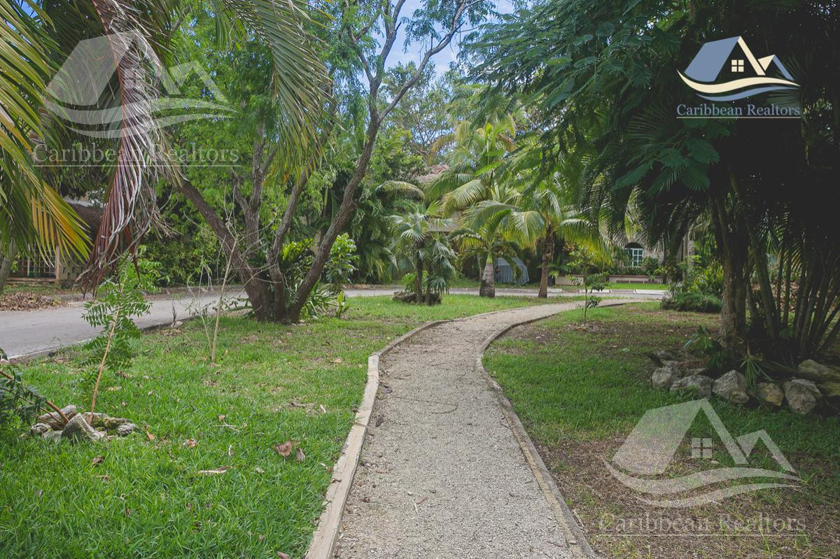 Picture Apartment in Rent   Sale in  Loltun,  Solidaridad  Loltun