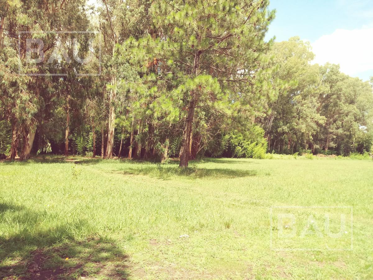 Foto Terreno en Venta en  Chacras Del Molino,  Countries/B.Cerrado (Exaltación)  Autopista 8