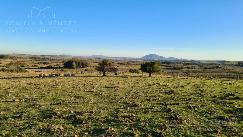 Foto Campo en Venta en  Pan de Azúcar ,  Maldonado  Cno. Arroyo Sauce increíbles vistas