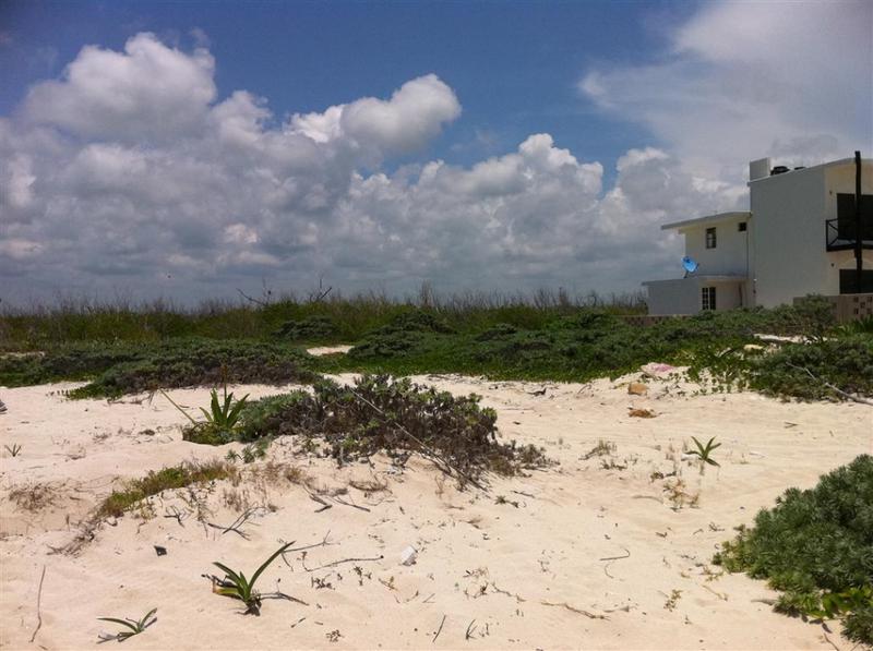 Puerto Morelos Land for Sale scene image 2