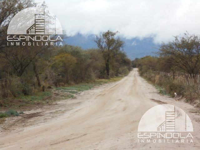Foto Campo en Venta en  Piedra Blanca Abajo,  Merlo  Merlo
