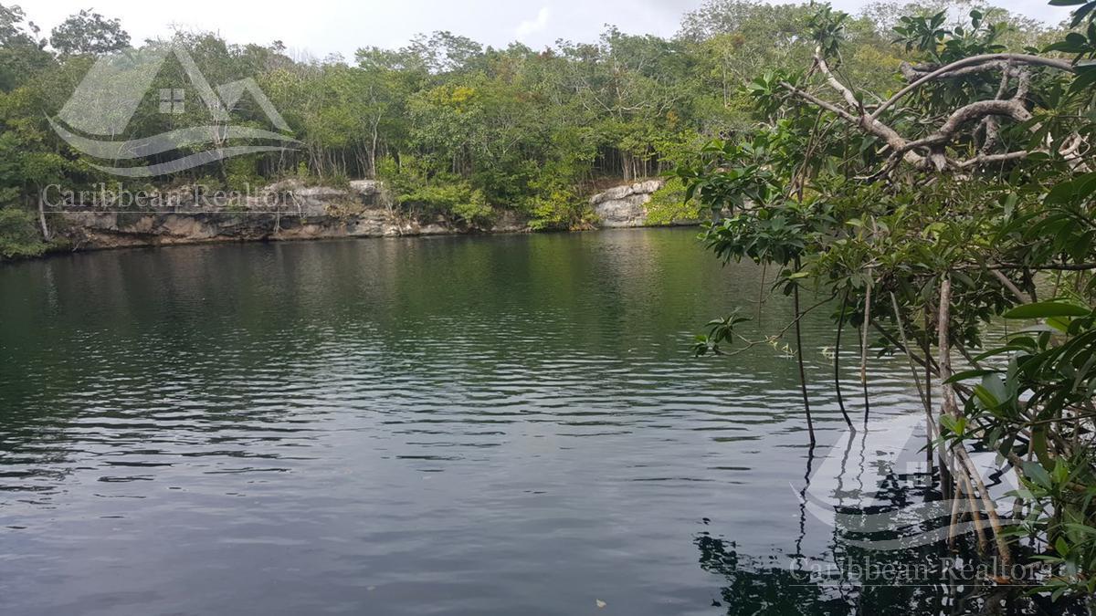Foto Terreno en Venta en  Tulum ,  Quintana Roo  Terreno en Venta en Tulum/Riviera Maya