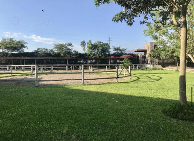 Foto Terreno en Venta en  Quilmana,  San Vicente de Cañete  Quilmana