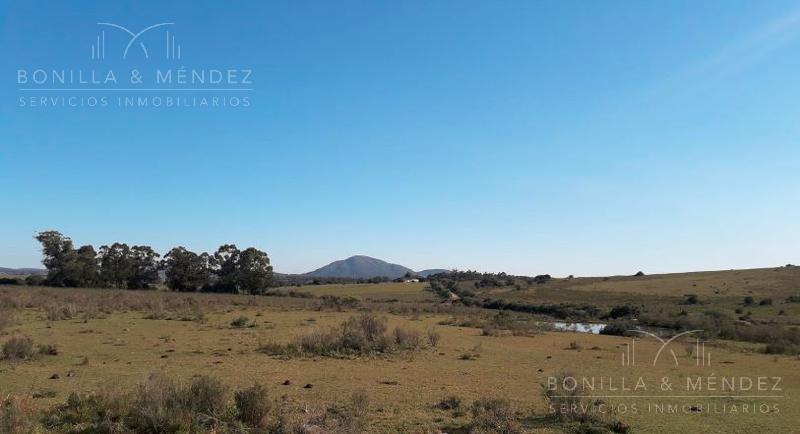 Foto Campo en Venta en  Pan de Azúcar ,  Maldonado  Camino Sanja de las Pajas Pan de Azúcar