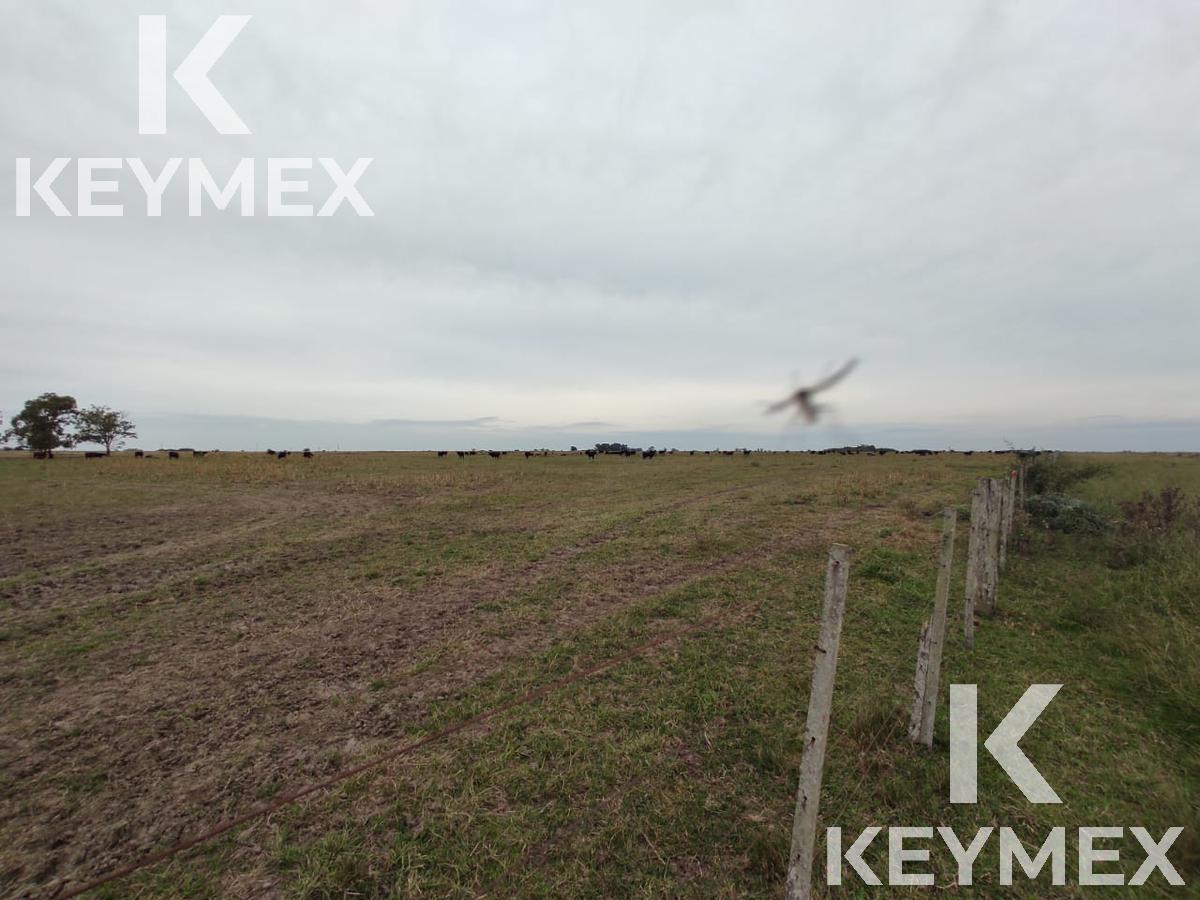 Foto Campo en Venta en  Magdalena,  Magdalena  Ruta 11. Altura del regimiento