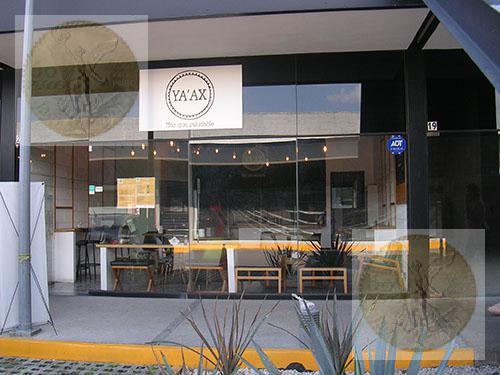Foto Local en Venta en  Querétaro ,  Querétaro  Cafetería acreditada en traspaso