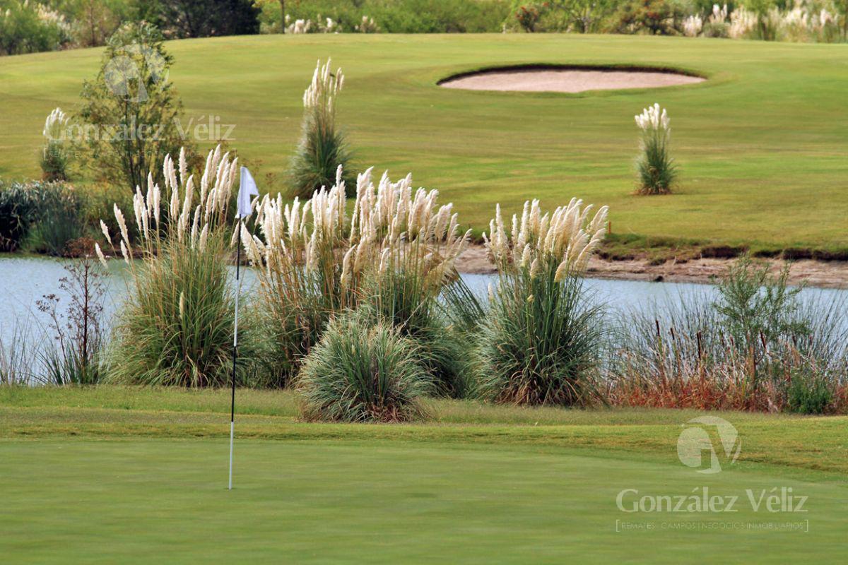 Foto Terreno en Venta en  Carmelo ,  Colonia  Carmelo Golf - Lote frente a la laguna