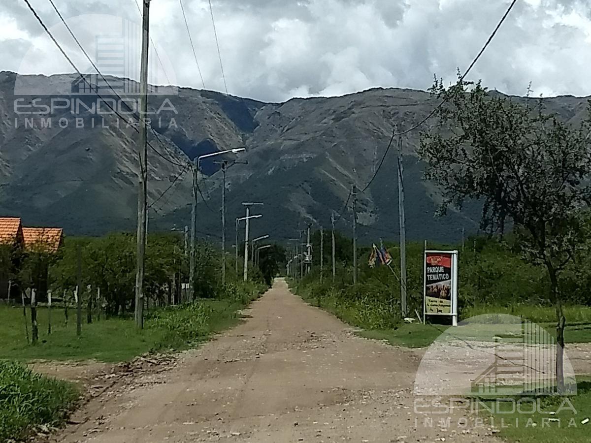 Foto Terreno en Venta en  Cerro de Oro,  Merlo  LAUREL al 600