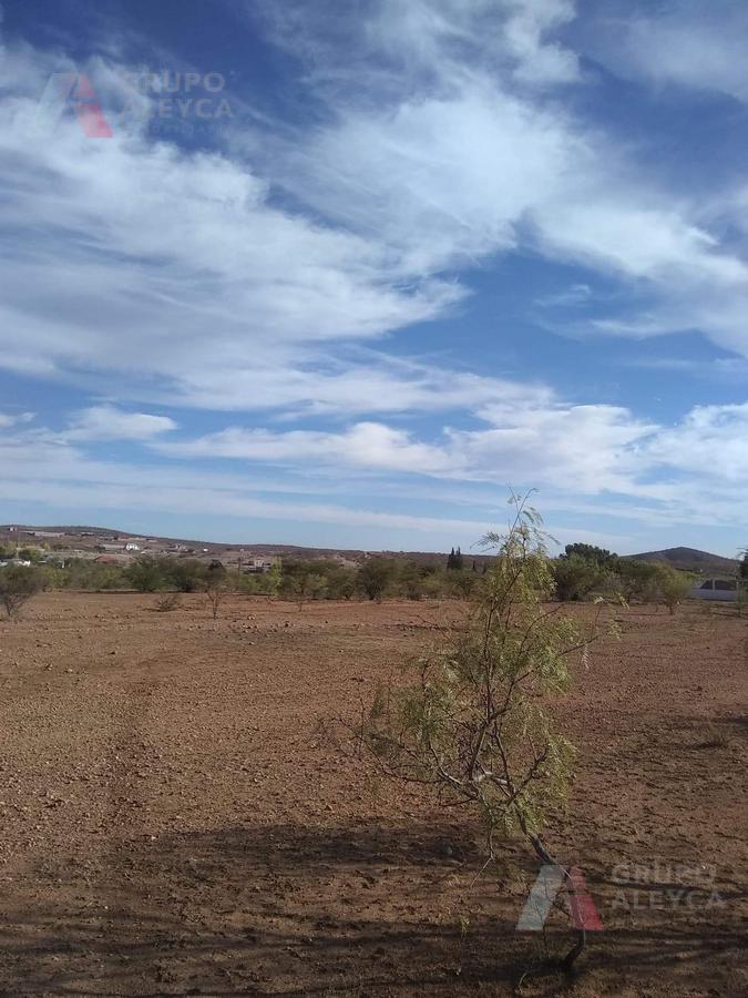 Foto Terreno en Venta en  Ejido Labor de Terrazas,  Chihuahua  TERRENO EJIDO CHUVISCAR 13 HECTARIAS