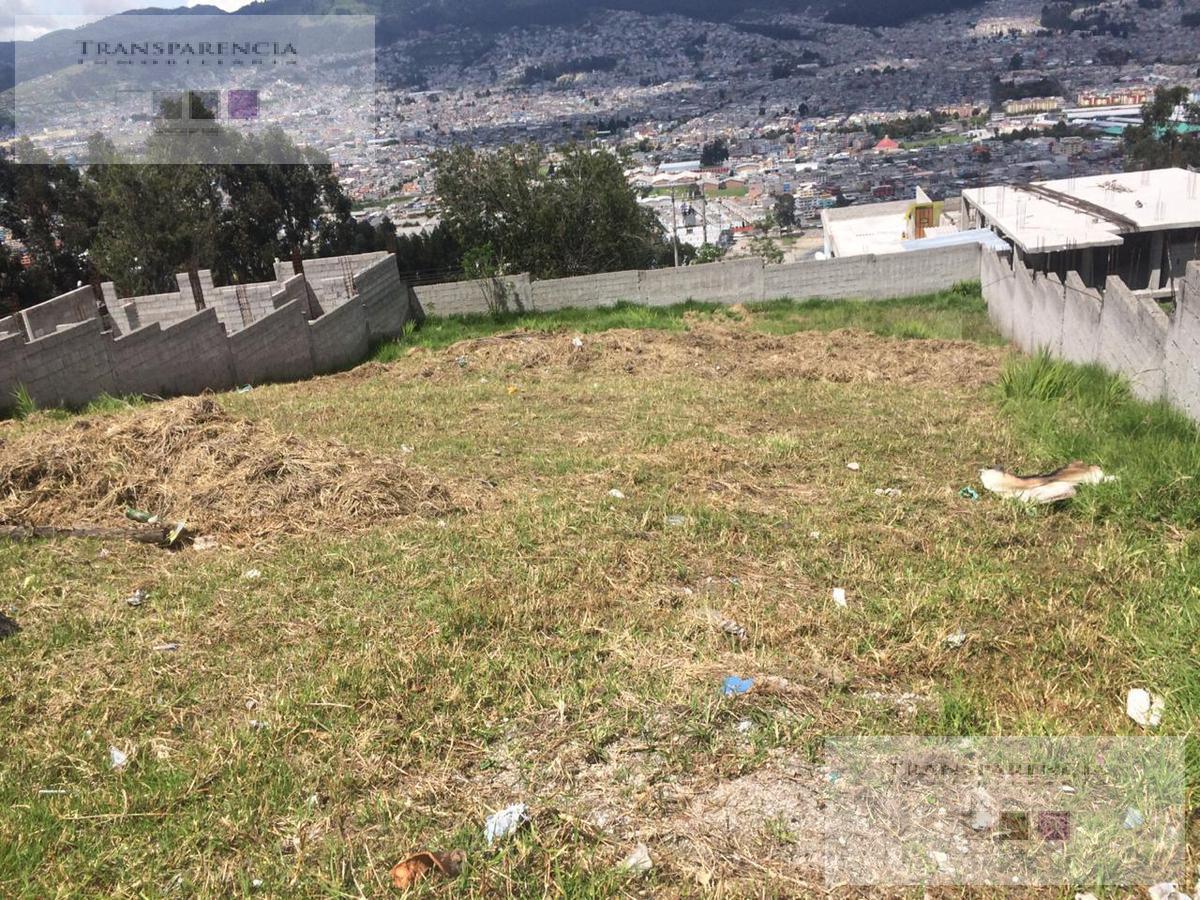Foto Terreno en Venta en  Sur de Quito,  Quito  LA ARGElIA