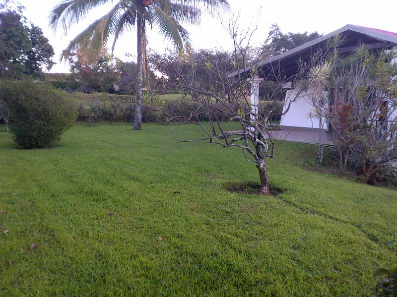Foto Casa en Renta en  Guacima,  Alajuela  CASA DE DOS PLANTAS CON AMPLIAS AREAS VERDES , FRENTE A CLUB DE HACIENDA LOS REYES.