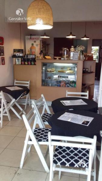 Foto Oficina en Alquiler en  Carmelo ,  Colonia  CIUDAD VIEJA