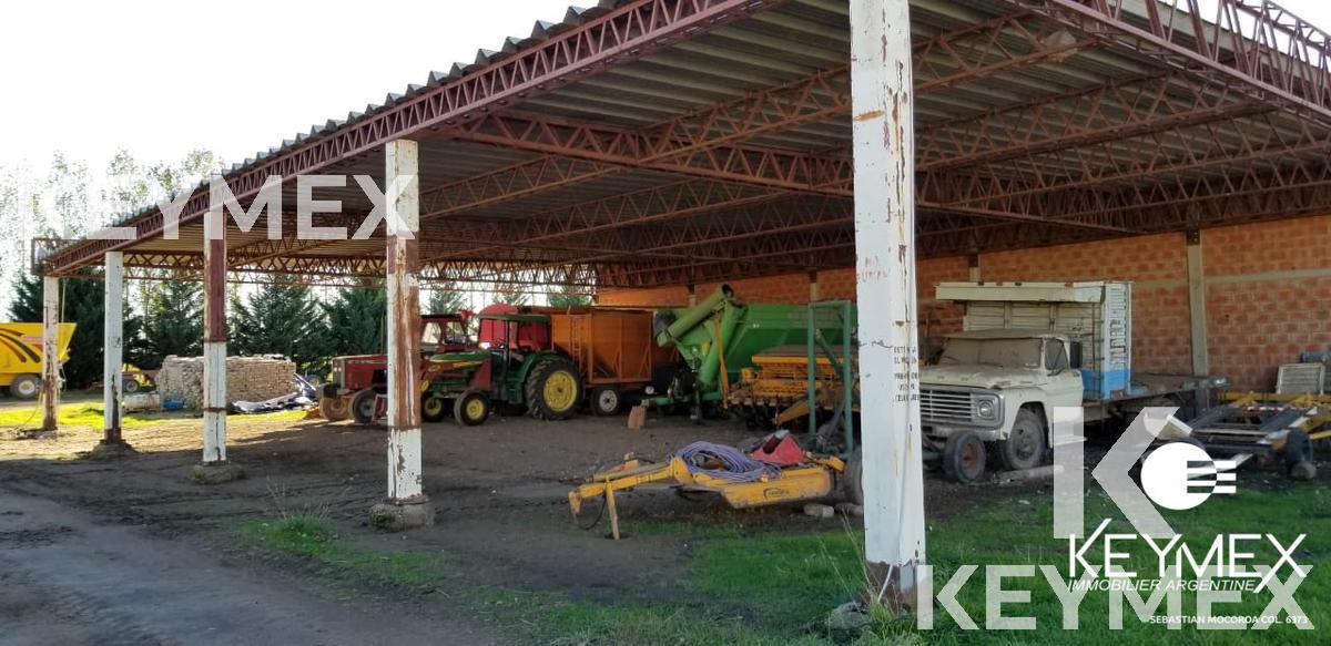 Foto Campo en Venta en  Macachin,  Atreuco  Macachin