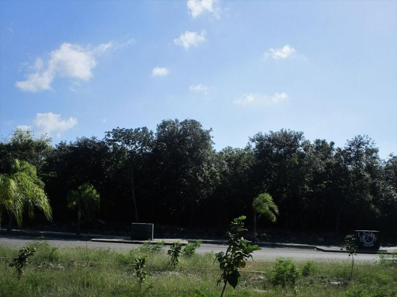 Solidaridad Land for Sale scene image 0
