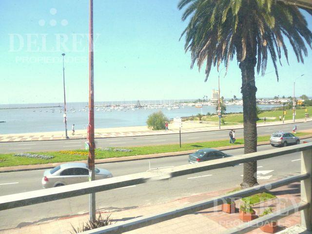 Foto Departamento en Alquiler en  Puerto Buceo ,  Montevideo  Rbla Armenia y Arturo Prat