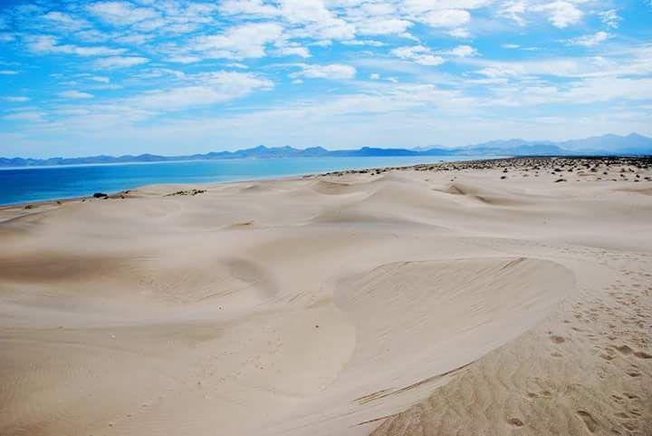 Foto Campo en Venta en  Paraíso del Mar,  La Paz  Terreno RP EL MOGOTE B.C.S.