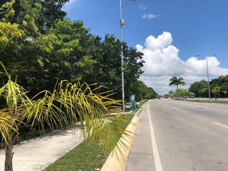 Foto Terreno en Venta en  Playa del Carmen ,  Quintana Roo  Terreno en venta 650  m2 colonia Arrecifes P2916
