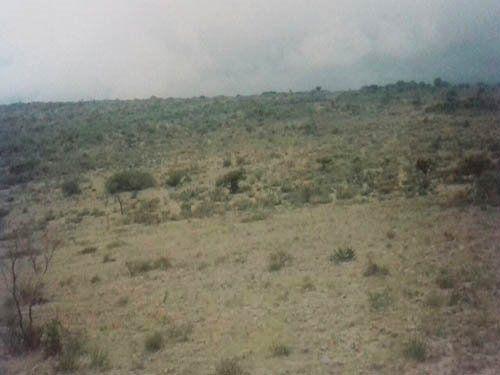 Foto Terreno en Venta en  Ciudad Tolimán,  Tolimán  Rancho con presa y manantial natural.