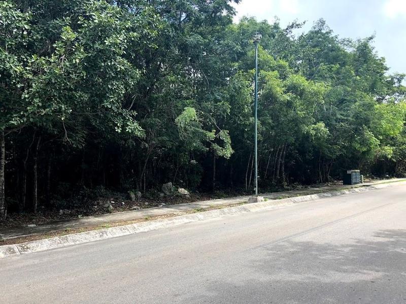 Foto Terreno en Venta en  Solidaridad ,  Quintana Roo  VENTA LOTES OPORTUNIDAD DE INVERSIÓN FRAC. ARRECIFES PLAYA DEL CARMEN, CLAVE CLAU402020