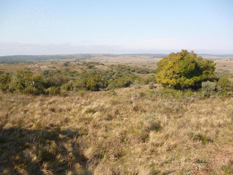 Foto Campo en Venta en  Otras ,  Lavalleja  Campo Departamento Lavalleja Barriga Negra a 28 km. de Minas