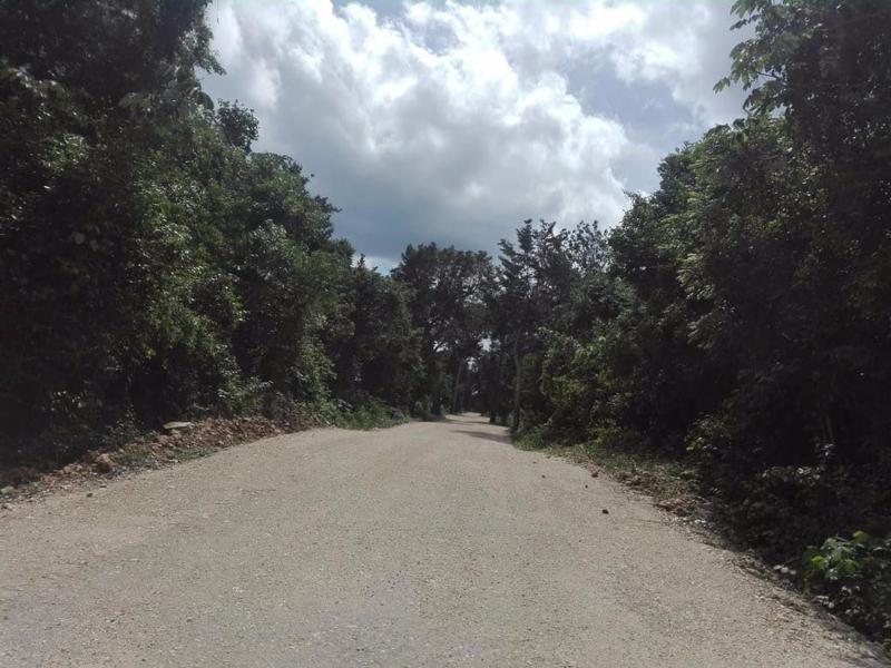 José María Morelos Land for Sale scene image 1
