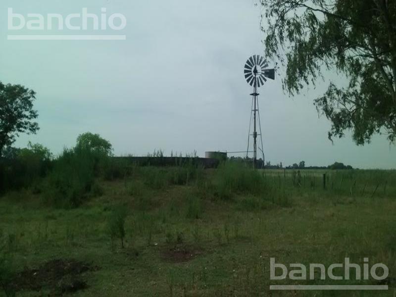100 HA MIXTAS EL SOCORRO, El Socorro, Interior Buenos Aires. Venta de División campos - Banchio Propiedades. Inmobiliaria en Rosario