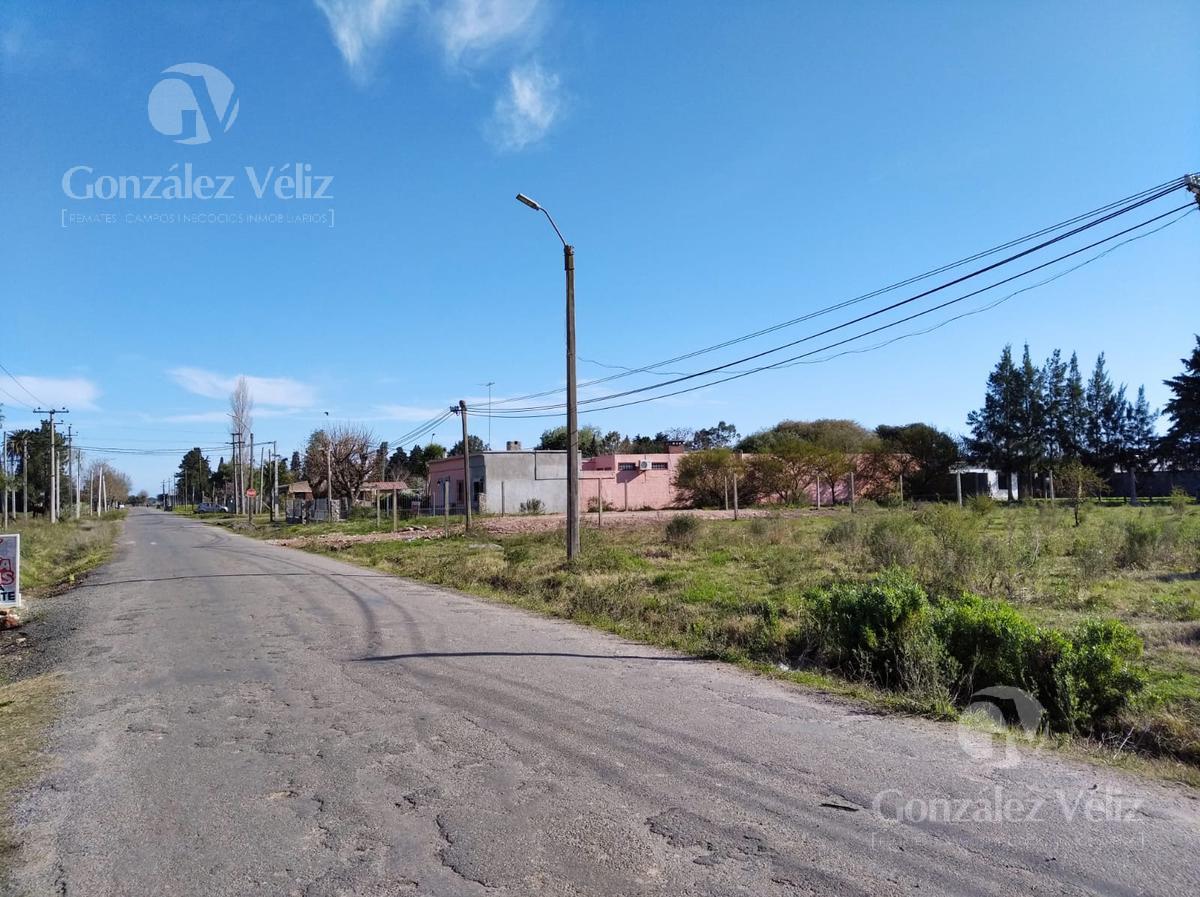 Foto Terreno en Venta en  Carmelo ,  Colonia  Lotes de terrenos desde 451m2 en calle Rivera casi Av. Paraguay