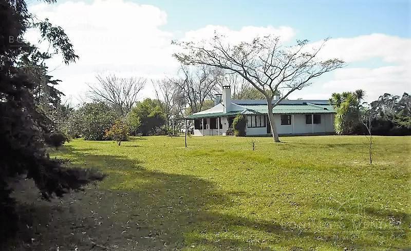 Foto Campo en Venta en  Castillos ,  Rocha  Chacra Ruta 9 km al 270 a 5 km de Castillos BAJAMOS EL PRECIO