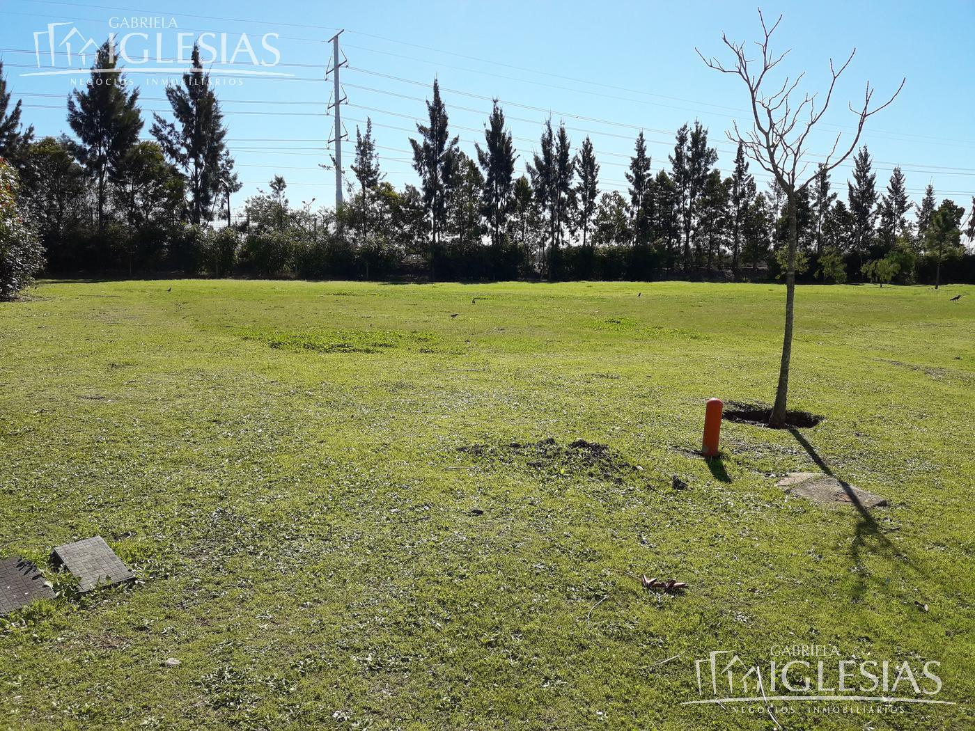 Terreno en Venta en Los Alisos a Venta - u$s 169.000