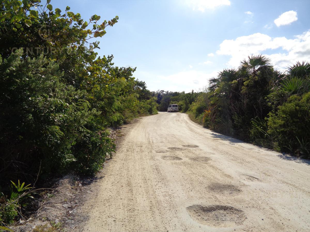 Foto Terreno en Venta en  Othón P. Blanco ,  Quintana Roo  TERRENO EN VENTA  KM 6.5 CARRETERA MAHAHUAL -  XCALAK C2709