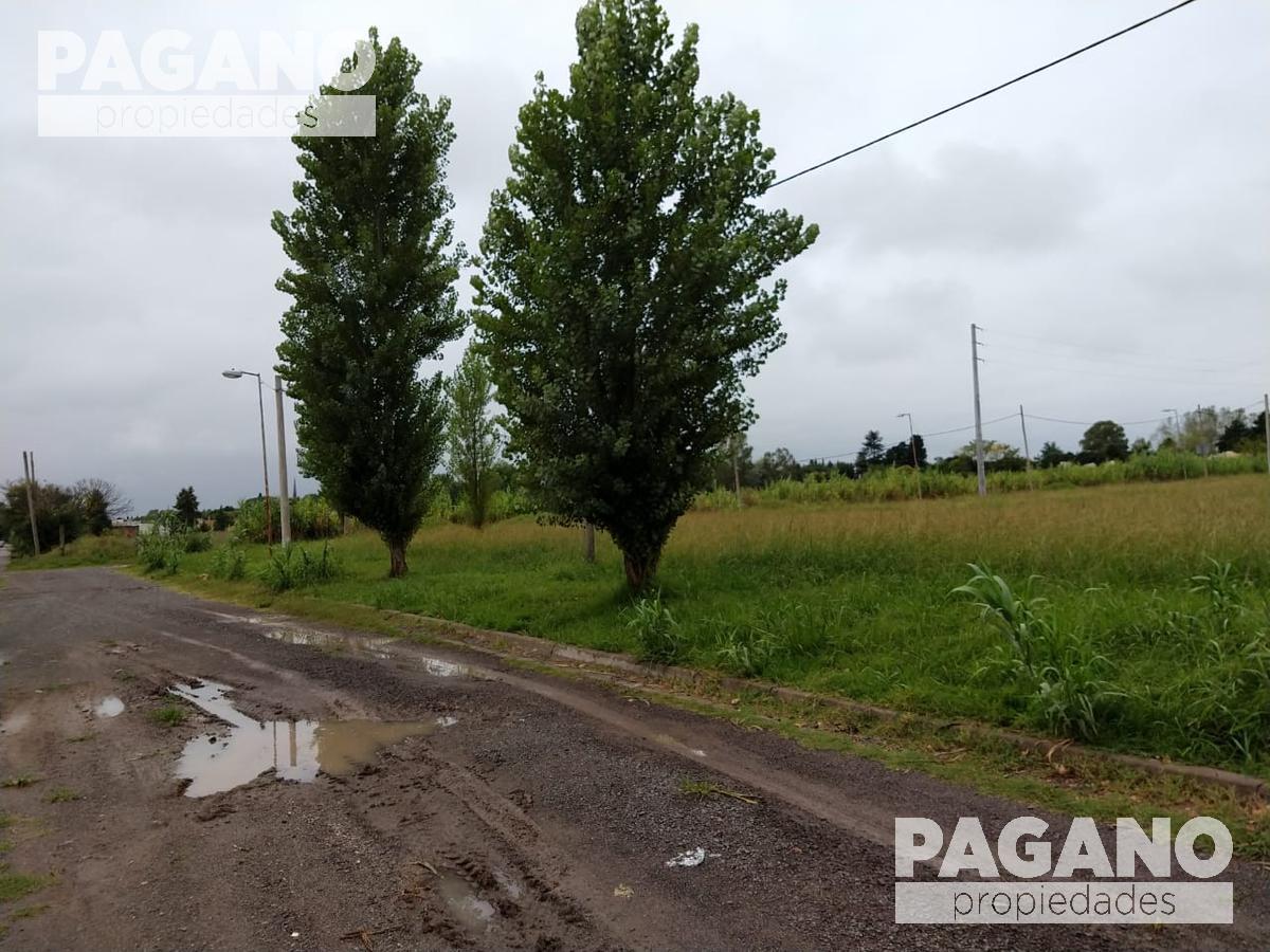 Foto Terreno en Venta en  Joaquin Gorina,  La Plata  487 e/ 137 y 138