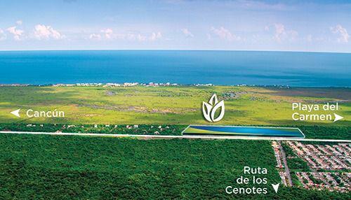 Foto Terreno en Venta en  Puerto Morelos,  Puerto Morelos  Lote residencial en venta en Puerto Morelos C2035
